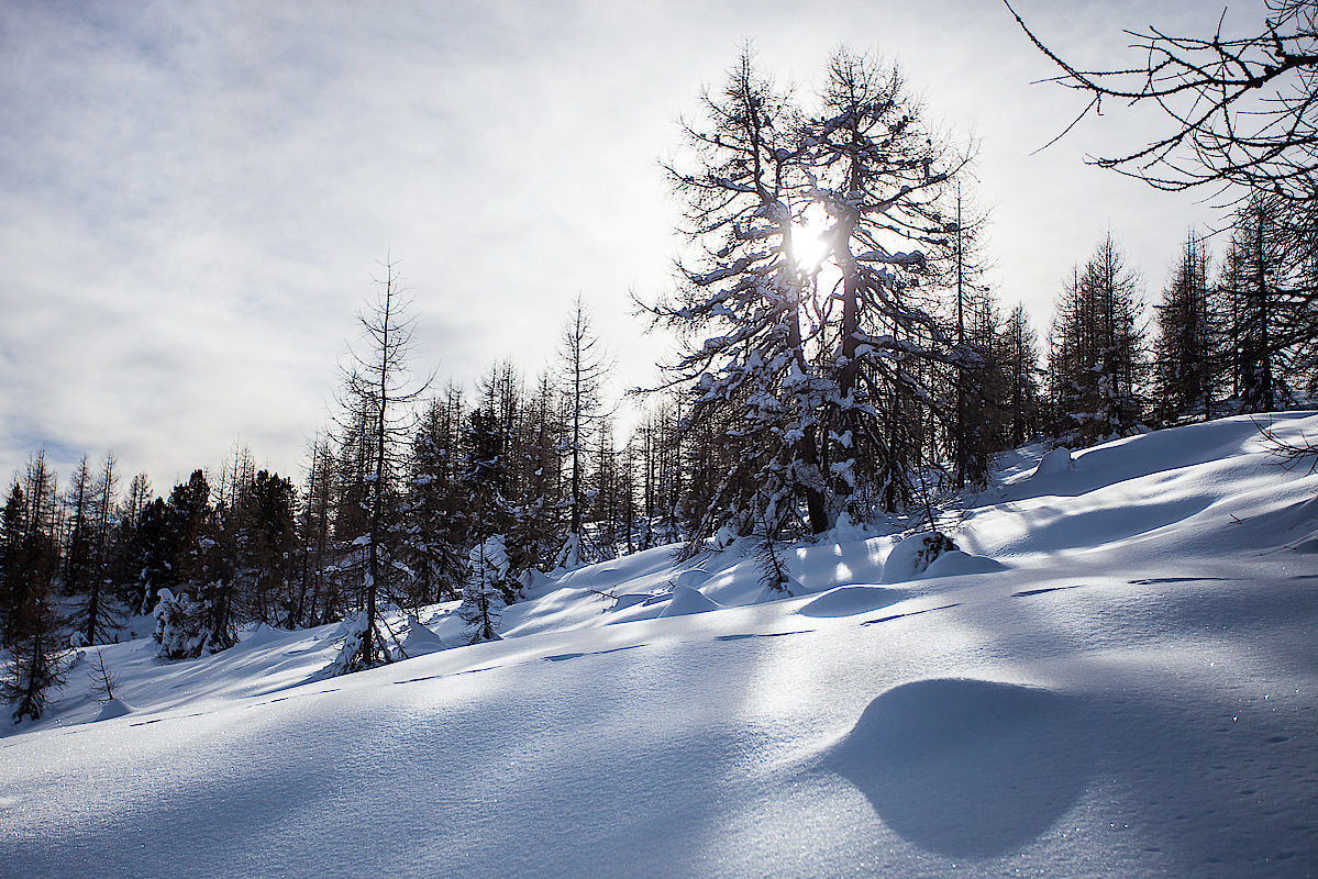 Winterwunderland im Villgratental
