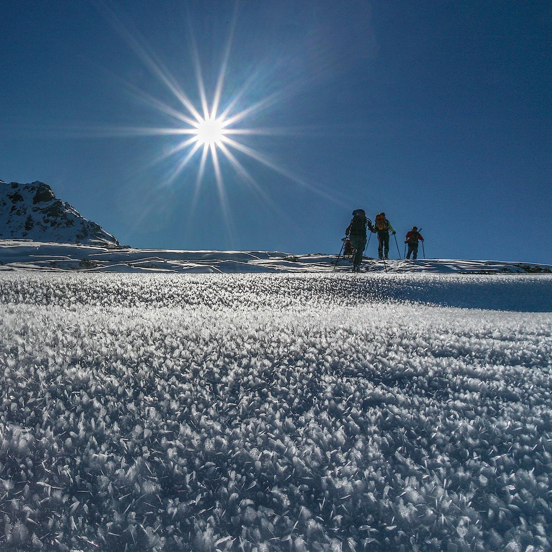 Kostenlose hintergrundbilder winter